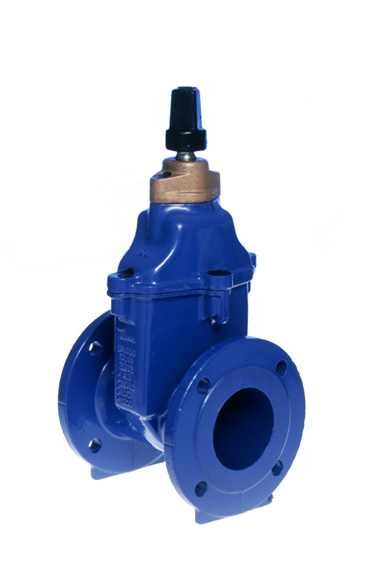 Figure 500 - Resilient Seated Gate Valve
